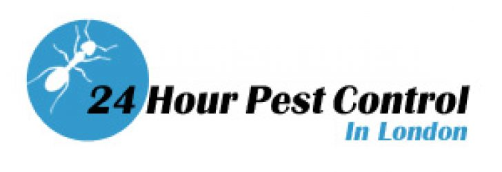 24 Hour Pest Control in London